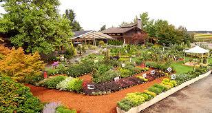 garden centers near me. Contemporary Garden Splendid Design Inspiration Houston Garden Center Near Me Find A Monrovia Inside Centers O
