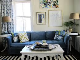 Living Room Accessory Blue Living Room Accessories Home Design Home Decor