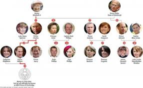 the line of succession ly the line of succession infographic