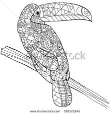 Small Picture Hand drawn bird toucan Isolated on transparent background anti