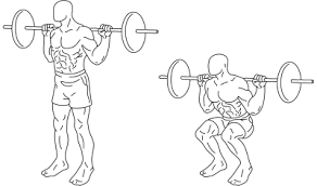 the parallel back squat