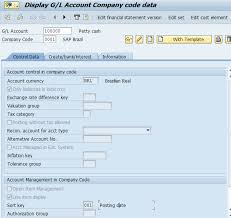 T Code To Display Chart Of Accounts In Sap Sap G L Account Segments Free Sap Fi Training
