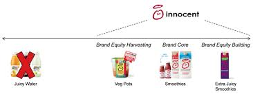 Entry Into Adjacent Products Categories Lessons From The Consumer