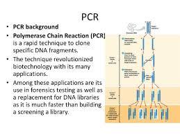 Ppt Pcr Powerpoint Presentation Id 1605638