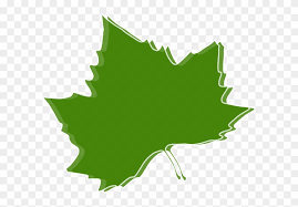 Chestnut Leaf Outline Template Autumn Leaves Clip Art Free