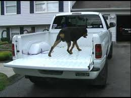 Rottweiler jumps in back of a pickup truck.avi - YouTube