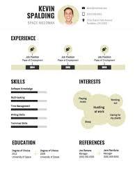 Resume Infographic Ckumca