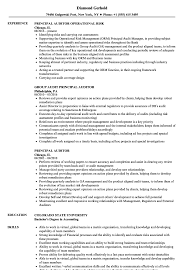 Auditor Resume Sample Internal It Auditor Resume Samples Velvet Jobs Night Auditor 80