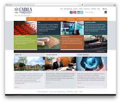 Wordpress Design India Cadilapharma Business Wordpress Theme Cadilapharma Com