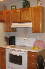 kitchen cabinets take them up to the ceiling or not