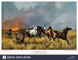 prairie fire victorian painting of wild horses running away from a conflagration on the american plains