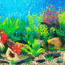 Detail Feedback Questions About Hot Sale Aquarium Background Paper