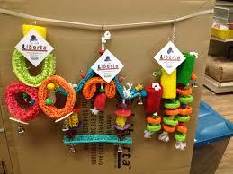 pet gloucester parrot toys