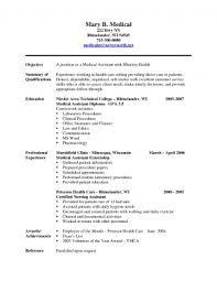 Objective Summary For Resume Extraordinary Resume Objectives Objective Summary For Unbelievable Templates