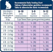 Kitten Feeding Chart Kitten Weight Chart World Of Reference