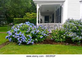 brewster flower garden. North America, USA, Massachusetts, Brewster. Flowers Surround The Front Porch Of An Brewster Flower Garden