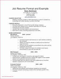 Xerox Resume Sample New Professional Resume Example Free High