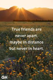 Long Distance Friendship Quotes Impressive 48 Short Friendship Quotes For Best Friends Cute Sayings About Friends