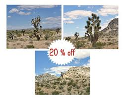 Small Picture Desert home decor Etsy