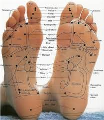 Left Foot Organ Chart Foot Reflexology Chart To Map Sole Zones And Organs