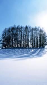 snow iphone 6 wallpaper.  Snow Snow Trees IPhone 6 Wallpaper And Iphone T