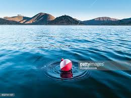 fishing bobber stock photos and pictures getty images