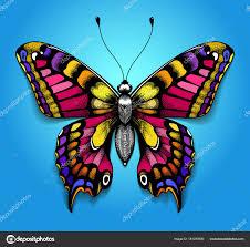 Krásné Tetování Hrudníku Jasný Barevný Motýl Na Modrém Pozadí