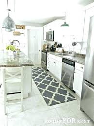 rug for kitchen sink area rugs in kitchen ideas kitchen sinks kitchen sink rugs kitchen sink
