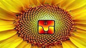 Resultado de imagen para semilla autoexistente amarilla