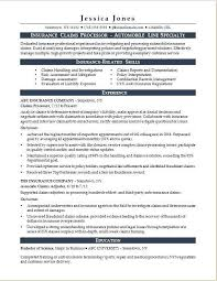 Insurance Manager Resume Insurance Resume Template Federal Resume Template 2017 Elegant