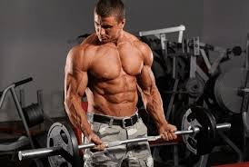 muscle growth mechanism 1 muscle tension weight lifting