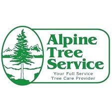 tree service boise alpine and terrys id89