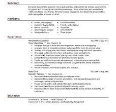 Alluring Describe Customer Service Experience On Resume Wellsuited - customer  service experience resume