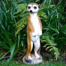 meerkat garden for in uk 62 used