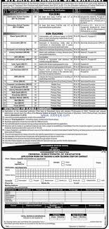 fde job govt federal directorate of education job school teacher