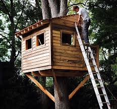 Free Woodworking Plans for Building a Tree HouseFree Tree House Plan at Popular Mechanics