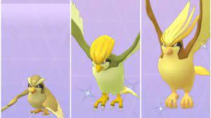 Evolving Shiny Pidgey in Pokemon Go - Shiny Pidgeotto & Shiny Pidgeot -  YouTube