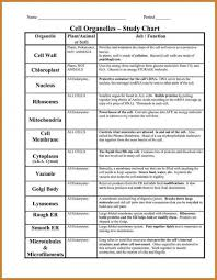 Cells And Their Functions Chart Employment Verification Form Template Science Cells