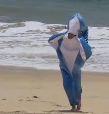 funny shark splash funny fish bachelorinparadise bachelor s alexis gif brewery shark gif