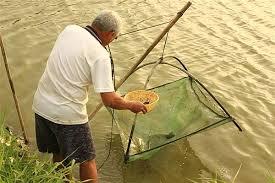 「捕魚工具」的圖片搜尋結果