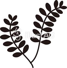 植物葉っぱ白黒イラスト No 297661無料イラストならイラストac