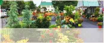 plant nursery centreville md an eastridge garden 410 758 3650
