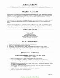 Resume Format For Pmo Job Best Pmo Resume Sample Format Pmo Sample Resume Commonpenc RS 54