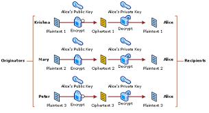 Digital Certificate Digital Certificate Its Architecture Process Interactions