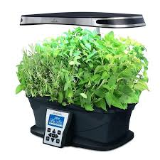 hydroponic herb garden kit indoor hydroponic herb garden kit elegant herb growing kit indoor fluorescent grow hydroponic herb garden kit indoor