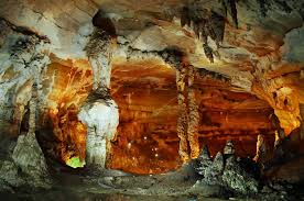 Kết quả hình ảnh cho Vườn quốc gia Phong Nha- Kẻ Bàng