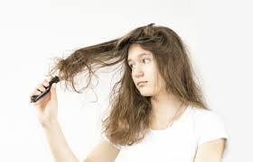 「髪 もつれる」の画像検索結果