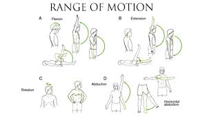 Range Of Motion Of Body Joint And Physiotherapy Exercise