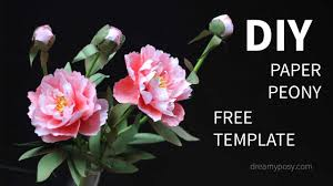 Peony Paper Flower Free Template How To Make Paper Peony Flower From Printer Paper