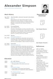 Vice President, General Counsel & Secretary Resume samples